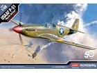 [1/48] USAAF P-51