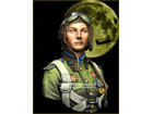 NIGHT WITCHES Soviet Night Bomber Regiment WWII
