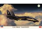 [1/72] F-14A TOMCAT